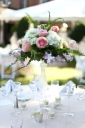 Reception & Party Decor